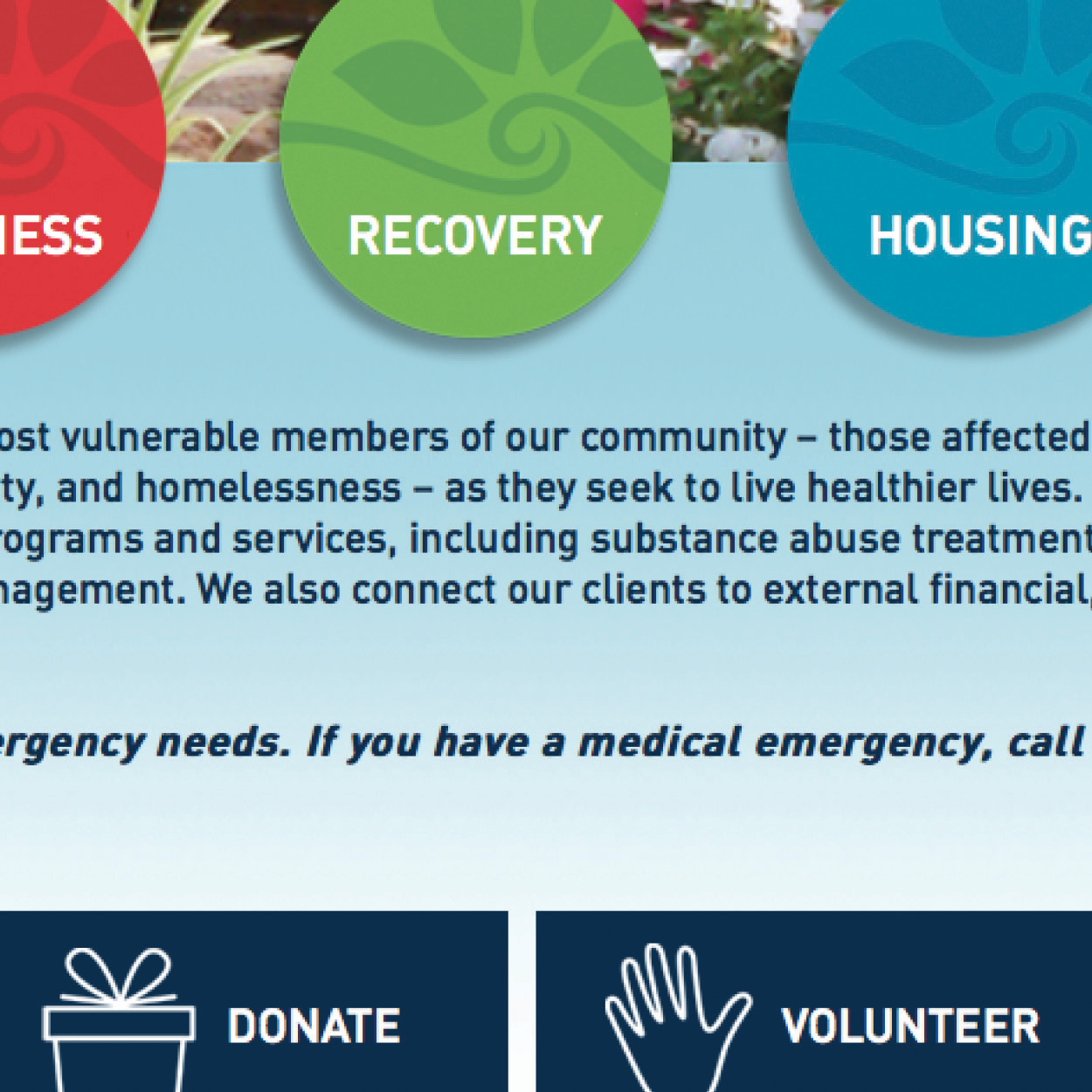 Acadiana Cares Website